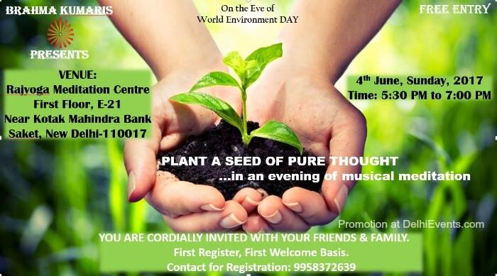 Plant Seed Pure Thought Brahma Kumaris Creative