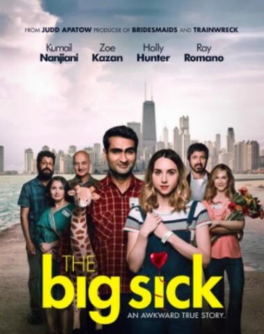 Big Sick English Romantic Comedy Kumail Nanjiani Zoe Kazan Creative