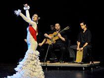 Flamenco Dance & Music
