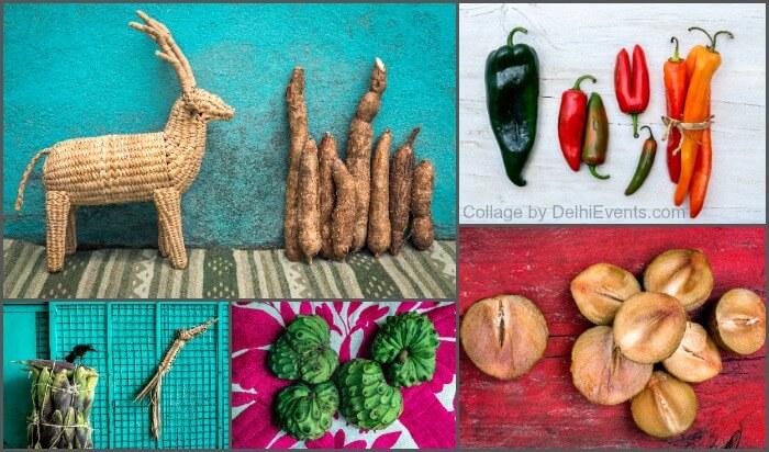 Seeds Identity Foods Mexico World Photography show Ariadna Cuadriello Juan Pablo Cardona Photographs
