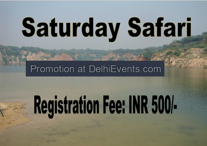 Saturday Safari Asola Bhatti Wildlife Sanctuary Creative
