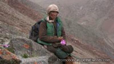 Shepherdess Glaciers Film Still