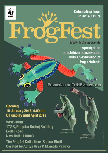 FrogFest show frog artefacts WWF-India Creative