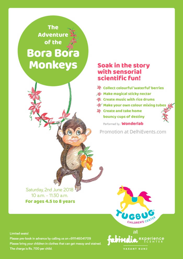Adventures Bora Monkeys story sensorial science session Tugbug Children's Center Creative