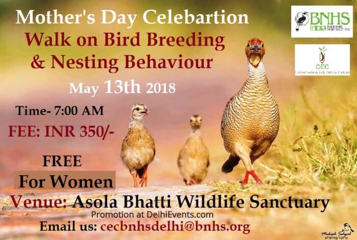 BNHS CEC-Delhi Bird Breeding Nesting Behaviour Mothers Day Asola Bhatti Wildlife Sanctuary Creative