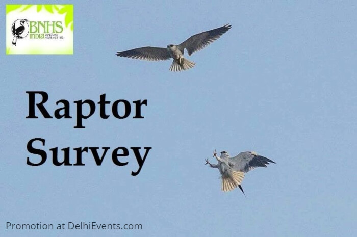 BNHS CEC-Delhi raptor survey Asola Creative
