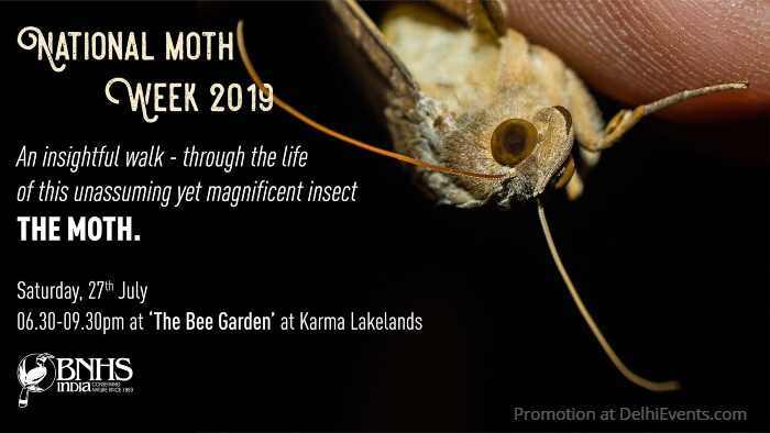 BNHS India National Moth Week Karma Lakelands Creative