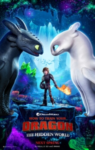 Train Dragon Hidden World Animation Film Poster