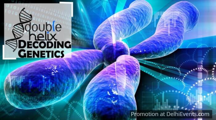 Hands On Double Helix Decoding Genetics Kids Workshop Creative