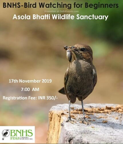 BnhsBird Watching Beginners Asola Bhatti Wildlife Sanctuary Creative