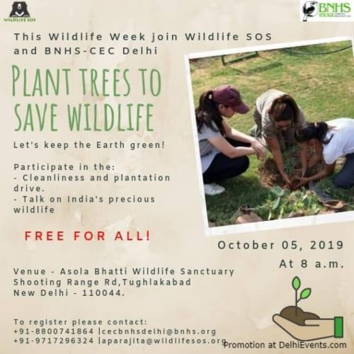 Plant Trees Save Wildlife Asola Bhatti Wildlife Sanctuary Creative