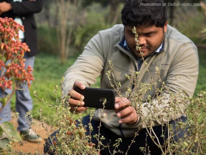 Nature Photography Walk Competition Mobile Phones Asola Bhatti Wildlife Sanctuary Creative